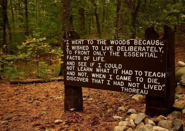 Muistokyltti Thoreaun mökin raunioilla on lainaus Walden-kirjasta.
